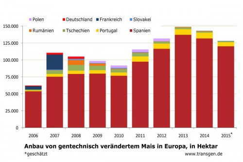 Anbaufläche gentechnisch veränderter Mais in der EU